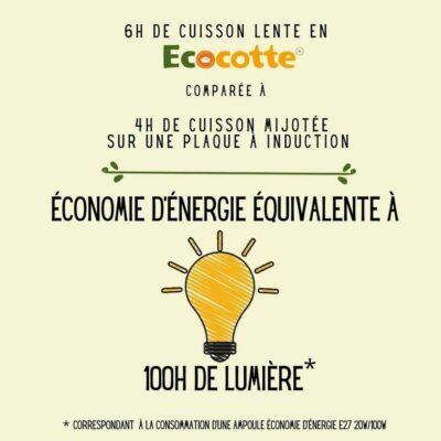 6 heures de cuisson lente en Ecocotte® comparées à 4 heures de cuisson mijotée sur une plaque à induction c'est une économie d'énergie équivalente à 100h de lumière!