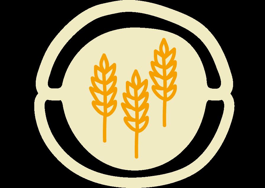 Recettes à base de céréales à l'Ecocotte®