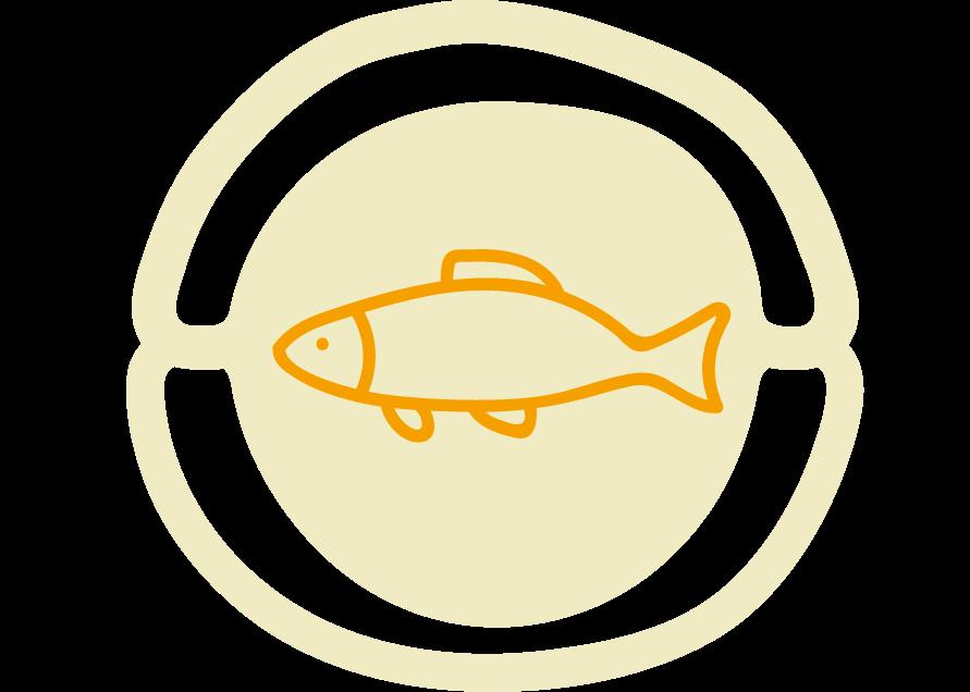 Recettes à base de poissons à l'Ecocotte®